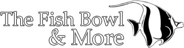 The Fish Bowl & More